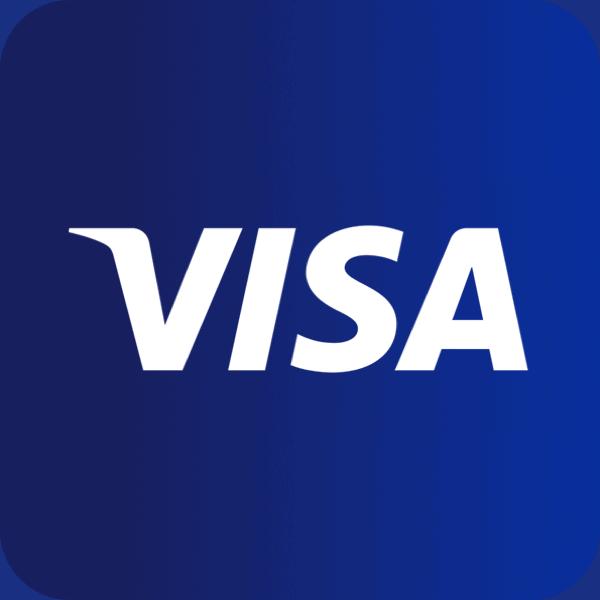 תשלום באמצעות ויזה visa